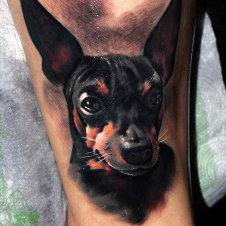 dog_salon tatuazu ursynow